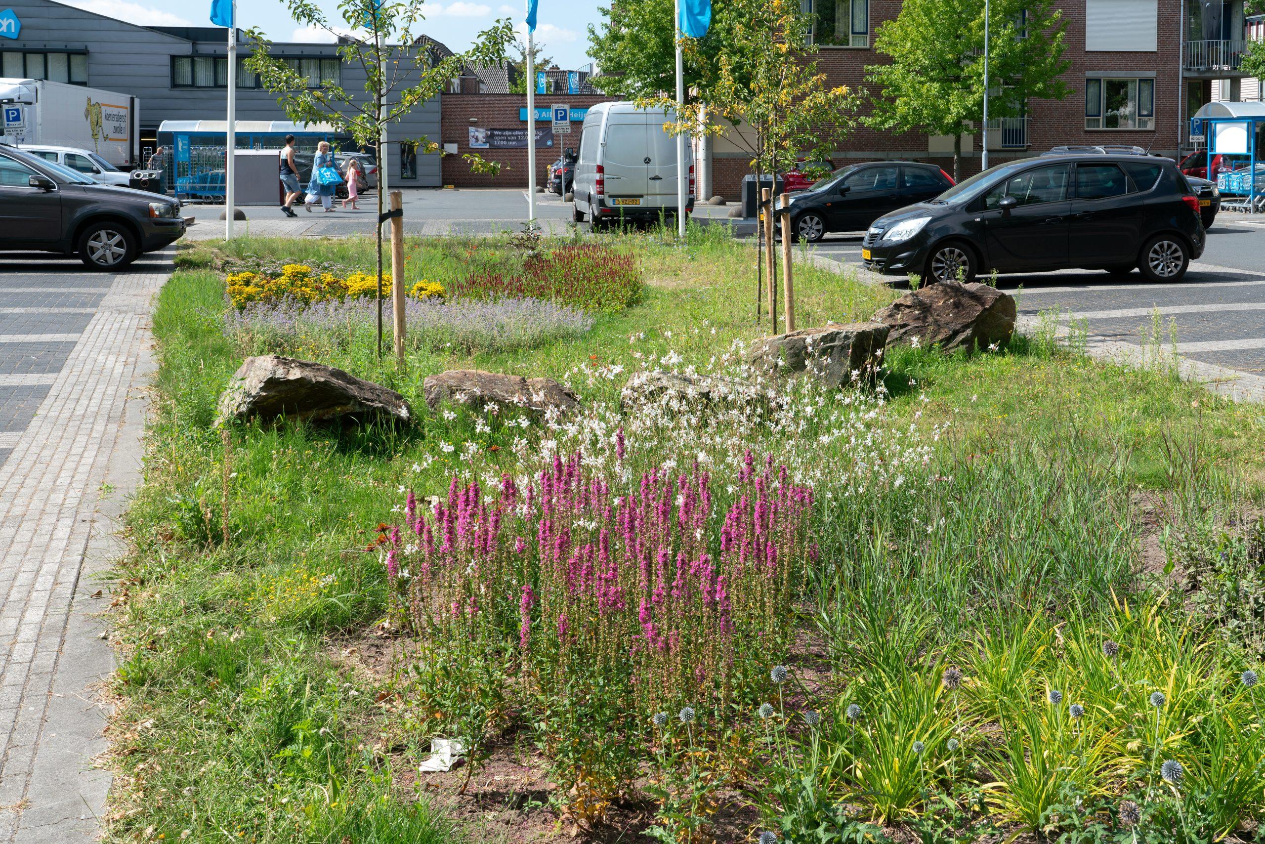 parkeerplaats met vaste planten plantsoen in Lichtenvoorde; park